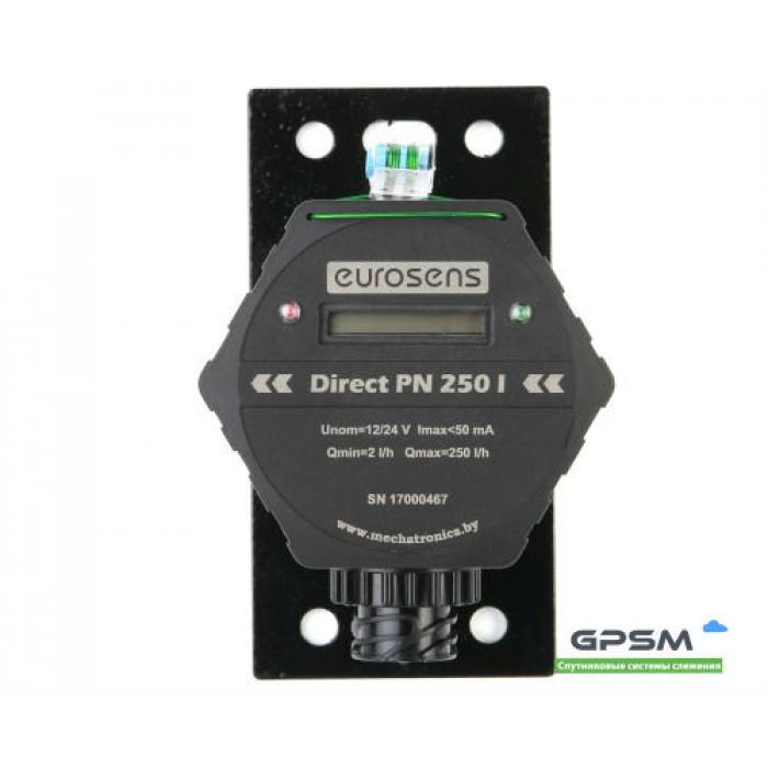 Расходомер Eurosens Direct PN 250 I